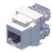 Legrand 36428803 Any Port RJ25 Jack Insert- Ivory