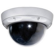 ARM Electronics C650VPWD WDR Outdoor Dome Camera (Day/Night)