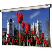 Da-Lite 38835 Easy Install Manual Projection Screen with CSR (52 x 92