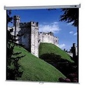 Da-Lite 85308 Model B Manual Front Projection Screen (96x96
