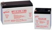 Enersys NP24-12T Lead Acid Battery, 12V, 24AH
