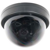 ARM Electronics CX580MD2VAIVP-B Color Exview Varifocal Vandal Dome Camera (ExView CCD, 580 Lines)