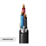 Belden 3089A 01010000 | Inst, 1 Tri #18 Str BC, PVC-NYL Ins E1, OS, Blk PVC Jkt, 600V TC-ER 150V NPLF 90C Dry/Wet