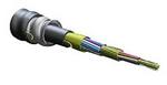 Corning 024E8F-31131-A1 | Freedm Cable, Indoor/Outdoor; 900um; OS2; 14.6mm OD; 24 Fiber