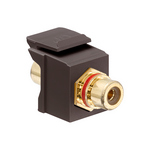 Leviton 40830-BBR | RCA Feedthrough QuickPort Connector, Gold-Plated, Red Stripe, Brown Housing